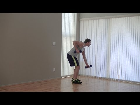 10 Min Beginners Workout - HASfit Low Impact Easy Workouts - Beginner Easy  Exercises