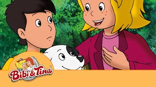 Bibi & Tina - Der Hundedieb