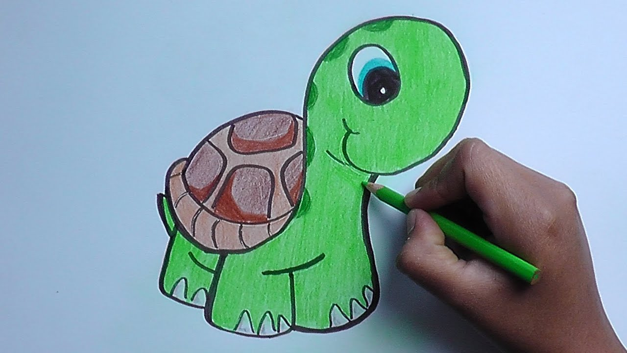 dibujando y pintando a una tortuga - drawing and painting a turtle ...