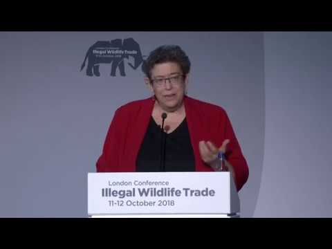 Illegal Wildlife Trade conference London 2018 Day 2: Illegal live animal trade