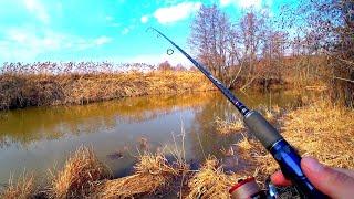 Как ловить ЩУКУ ранней весной на микро речке Большая прогулка по новым местам Весенний спиннинг