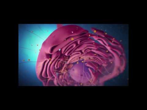 Дымковская игрушка. (Презентация/видео/фильм/Киров)из YouTube · С высокой четкостью · Длительность: 5 мин25 с  · Просмотры: более 43000 · отправлено: 06/11/2012 · кем отправлено: ОТКРЫВАШКА