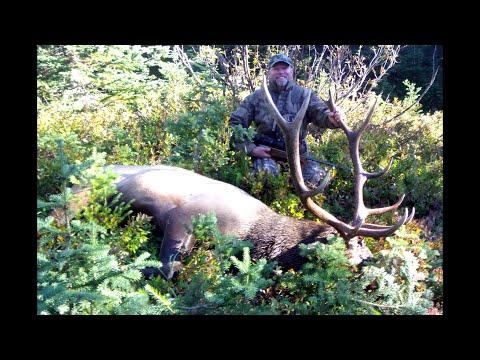 Bull Elk - Hunting On Horseback In The Mountains Of British Columbia
