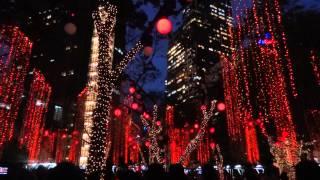 2012 Christmas Light Show Ayala Triangle Makati