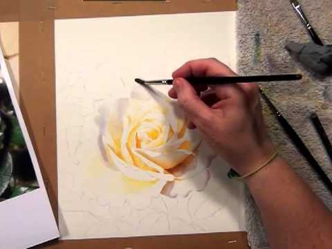 Watercolor dvd video how to paint a white rose by for How to paint a rose in watercolour