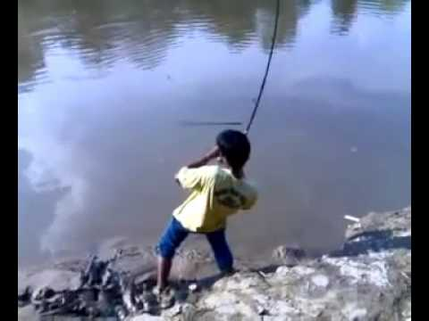 [MALAYSIA VIRAL] AMAZING MONSTER FISH CATCHING AT LOCAL RIVER 2xKG