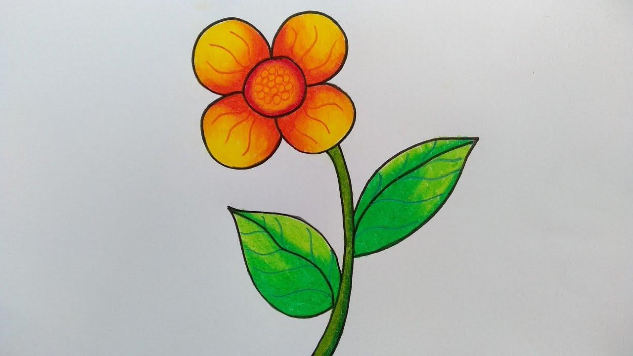 Cara Menggambar Dan Mewarnai Bunga Cara Menggambar Bunga Yang Mudah Youtube