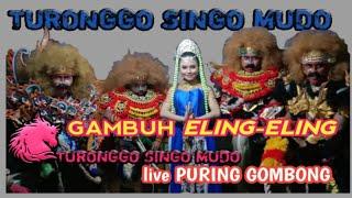 EBEG TURONGGO SINGO MUDO GAMBUH ELING-ELING live puring
