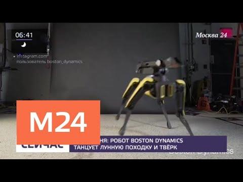Робот Boston Dynamics