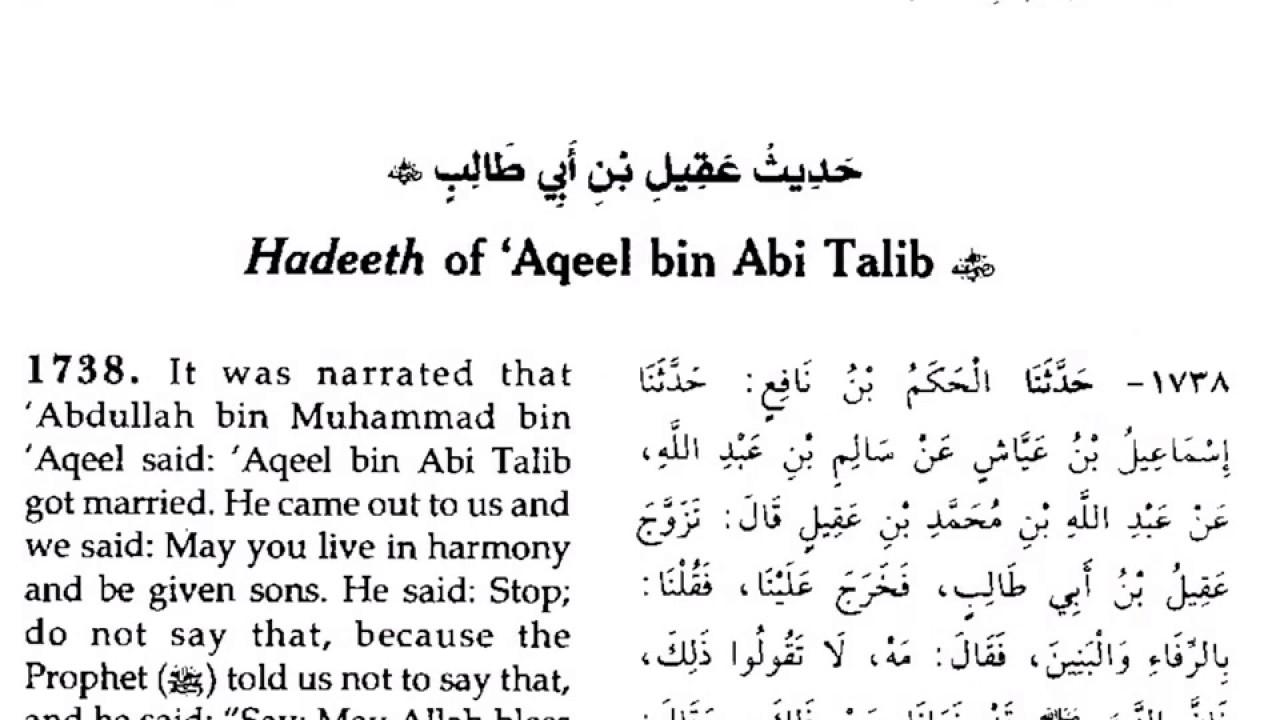 Aqeel ibn Abi Talib