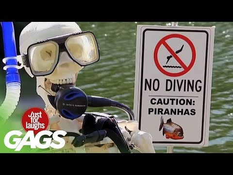 Live Ducks, Piranhas, and Explosion Pranks - Throwback Thursday