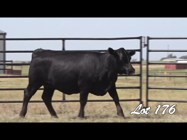 Pollard Farms Lot 176