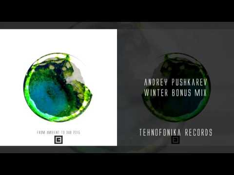 Andrey Pushkarev - From Ambient to Dub 2015 (Winter Bonus Mix - Sample)
