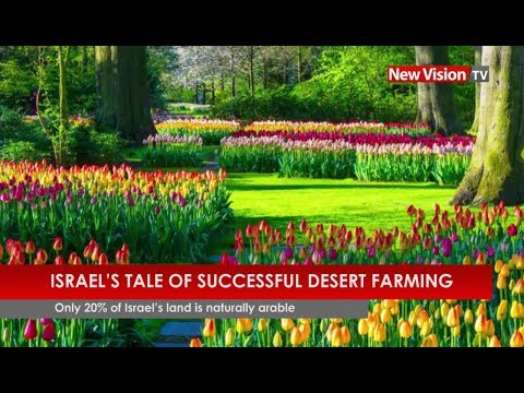Israel's tale of successful desert farming