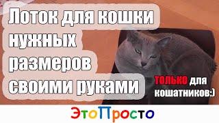 Лоток для кошки или кошачий туалет своими руками(Маруся Марковна - моя кошка, стала ходить мимо лотка, потому что он ей стал мал. У вас похожие проблемы? Как..., 2015-12-08T15:52:49.000Z)