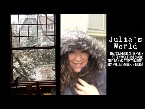 Julie's World Vlog: November 27 - December 17, 2017