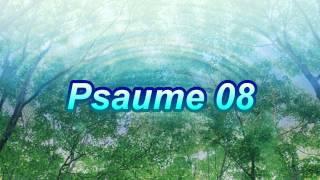 Psaume 08
