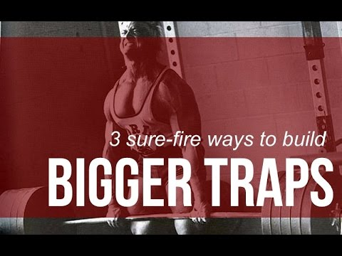 how to make your traps bigger