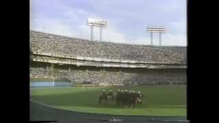 Baltimore Orioles: Final Years at Memorial Stadium (1989-1991) 1989 Why Not?