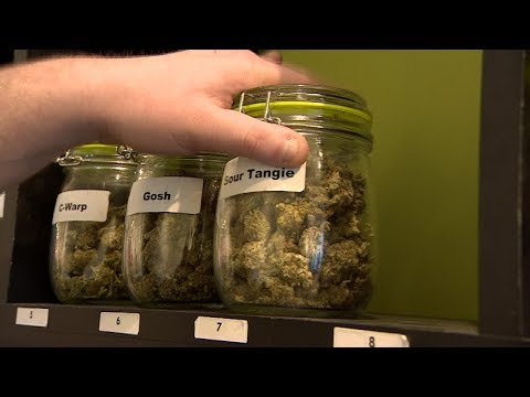 Make pot rules for employees clear and fair, urges Sask. chamber of commerce
