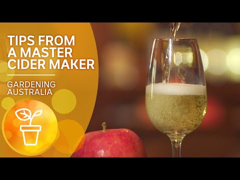 Tips from a master cider maker   Cooking your garden produce   Gardening Australia