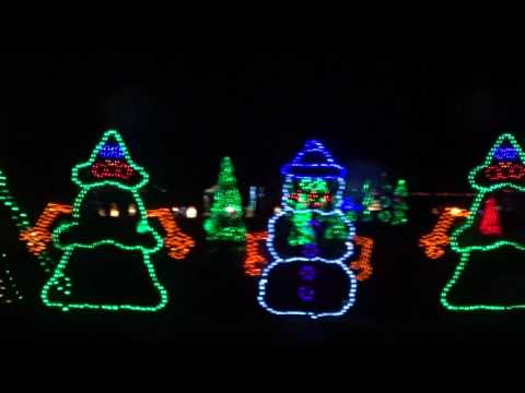 THE BEST CHRISTMAS LIGHTS EVER!!