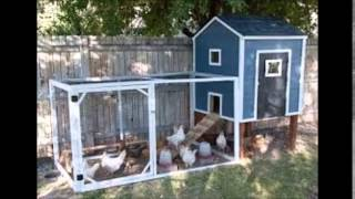 Chicken Coop Plans, Designs-how To Build A Chicken Coop Download