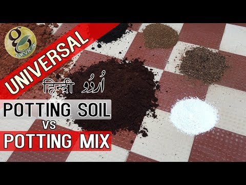 UNIVERSAL Potting Mix vs Potting Soil Difference | Best Potting Mixture for Plants Hindi/Urdu