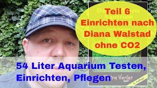 Bepflanztes 54l Aquarium ohne CO2 & Düngung nach Diana Walstad einrichten