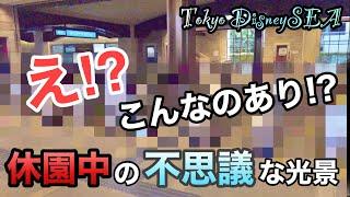 東京ディズニーシー 休園でモノレールの駅が何とも不思議な光景に!?