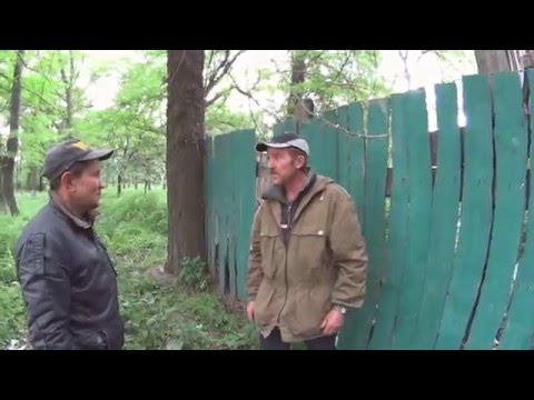 Видео приколы про бомжей - Видео приколы - Видео приколы
