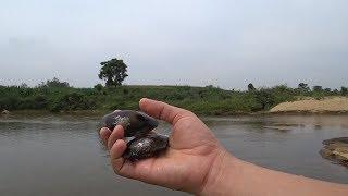 Ra sông bắt ốc, bắt hến. Cuối cùng được hai con chem chép(trai nước ngọt)
