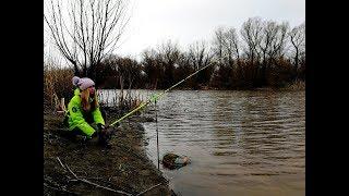 Весенняя рыбалка 2019 на поплавок.Карась атакует