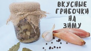 Очень вкусный рецепт маринованных маслят. Заготовка грибов на зиму. Мой опыт.