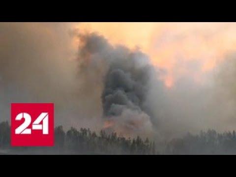 Катастрофа Португалии: люди в машинах сгорают заживо