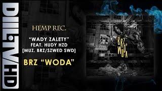 BRZ - Wady zalety feat. HUDY HZD [muz. BRZ/SZWED SWD] | (AUDIO DIIL TV)