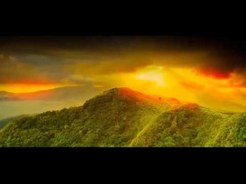 Arikilillenkilum - അരികിലില്ലെങ്കിലും |  Iniyennum Ninakkai Series  Lyrical Song