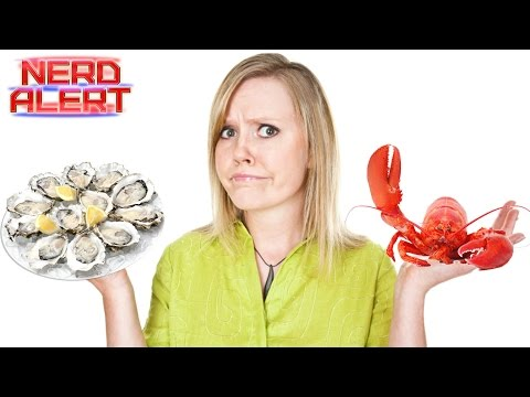 Eating Shellfish Could Give You Amnesia