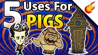 🐷 5 Primary Uses For PIGS in DON
