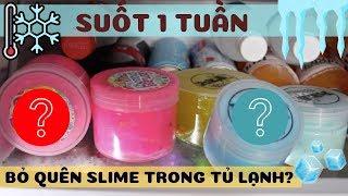Bỏ slime trong tủ lạnh 1 tuần sẽ ra sao? Đại Chiến Hai Shop Slime Nên Thử Mua 1 lần