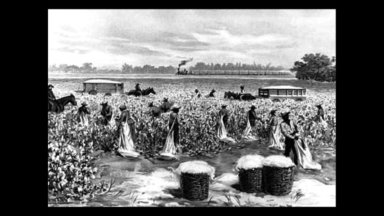 Convict Leasing System