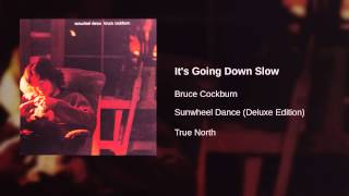 Bruce Cockburn - It