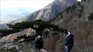 Parco Nazionale del Pollino, dal Piano Ruggio al Belvedere del Malvento.