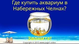 Купить аквариум Набережные Челны(Купить аквариум Набережные Челны - Где купить аквариум в Набережных Челнах? Звоните! Если вы ищете, где купи..., 2015-07-31T19:39:06.000Z)