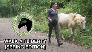 Spirit on a walk at liberty [Spring Edition]