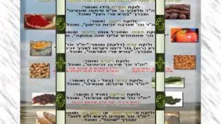 חג שמח ושנה טובה! זה הזמן לסלוח. חיים ישראל.WMV