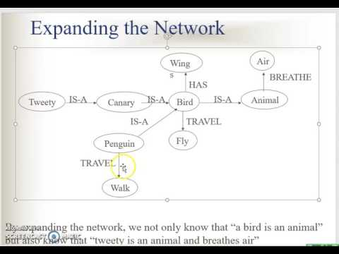 semantic net