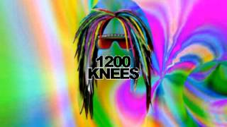 1200 KNEES - THE 1200 WARRIORS