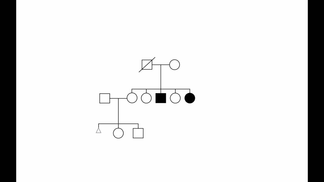 Using Standard Pedigree Symbols By Bruce Korf For Openpediatrics