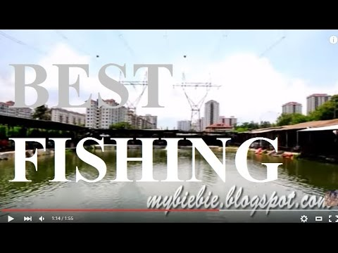 Best Fishing Spot Kuala Lumpur - Desa Fishing Sport Taman Desa